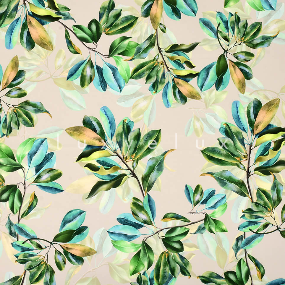 Colorful Leaves on White Background