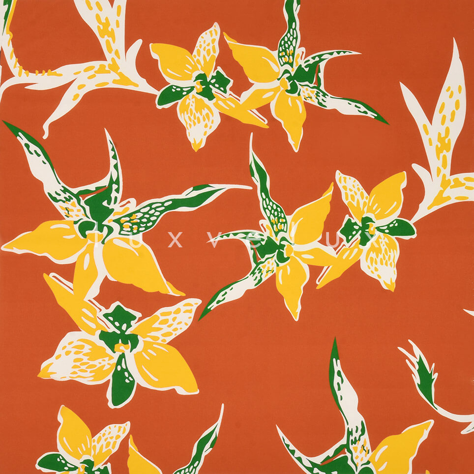 Star Flower on Orange Background
