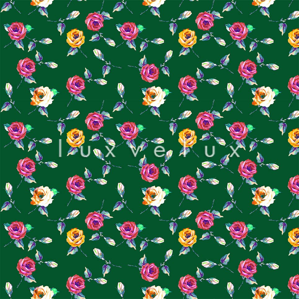 Garden Roses Ground Green Flowers Colorful Maria