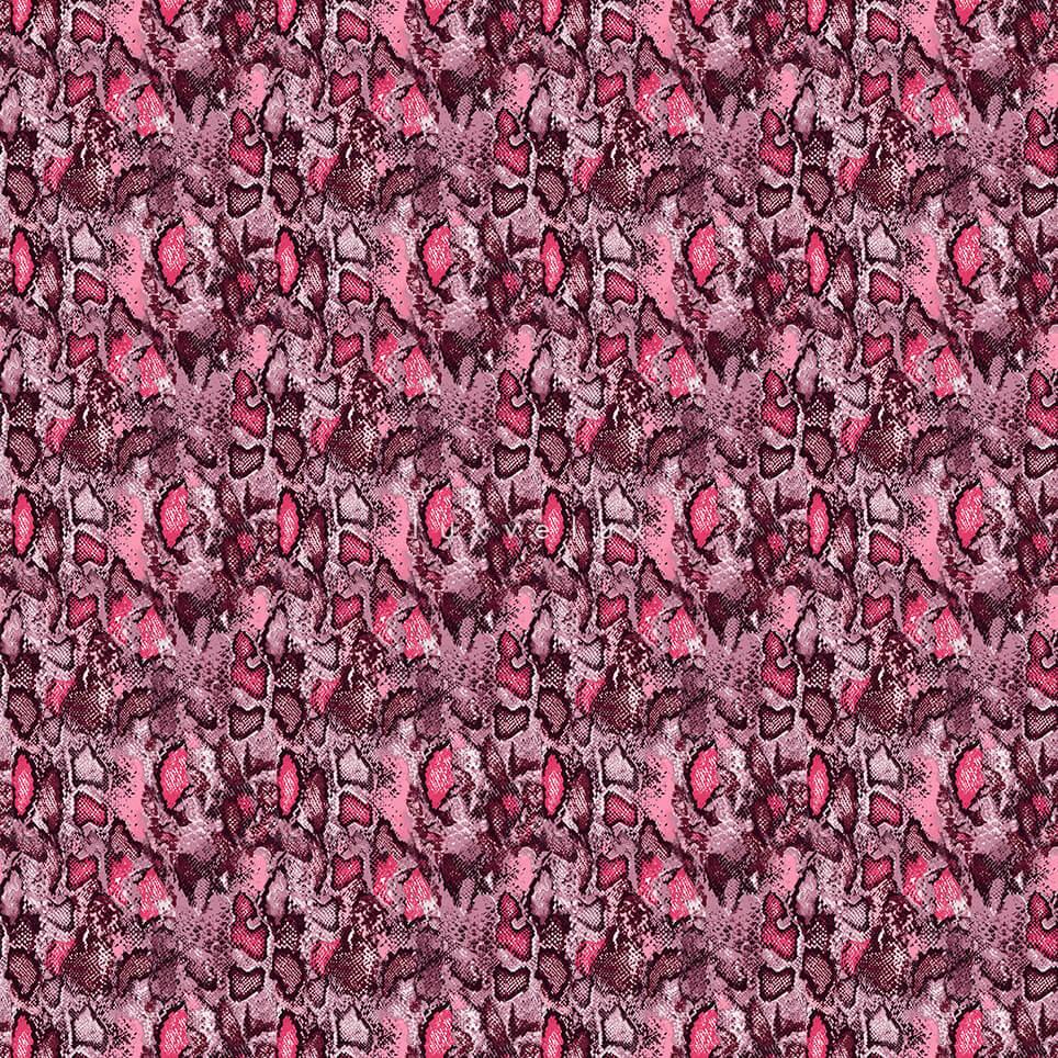 Neon Color Leopard Pattern Plato Gretta