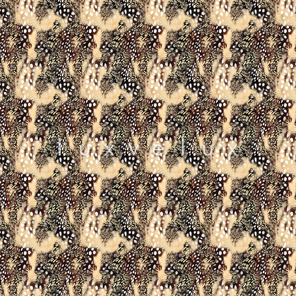 Points Leopard Pattern Ground Plato Elisa