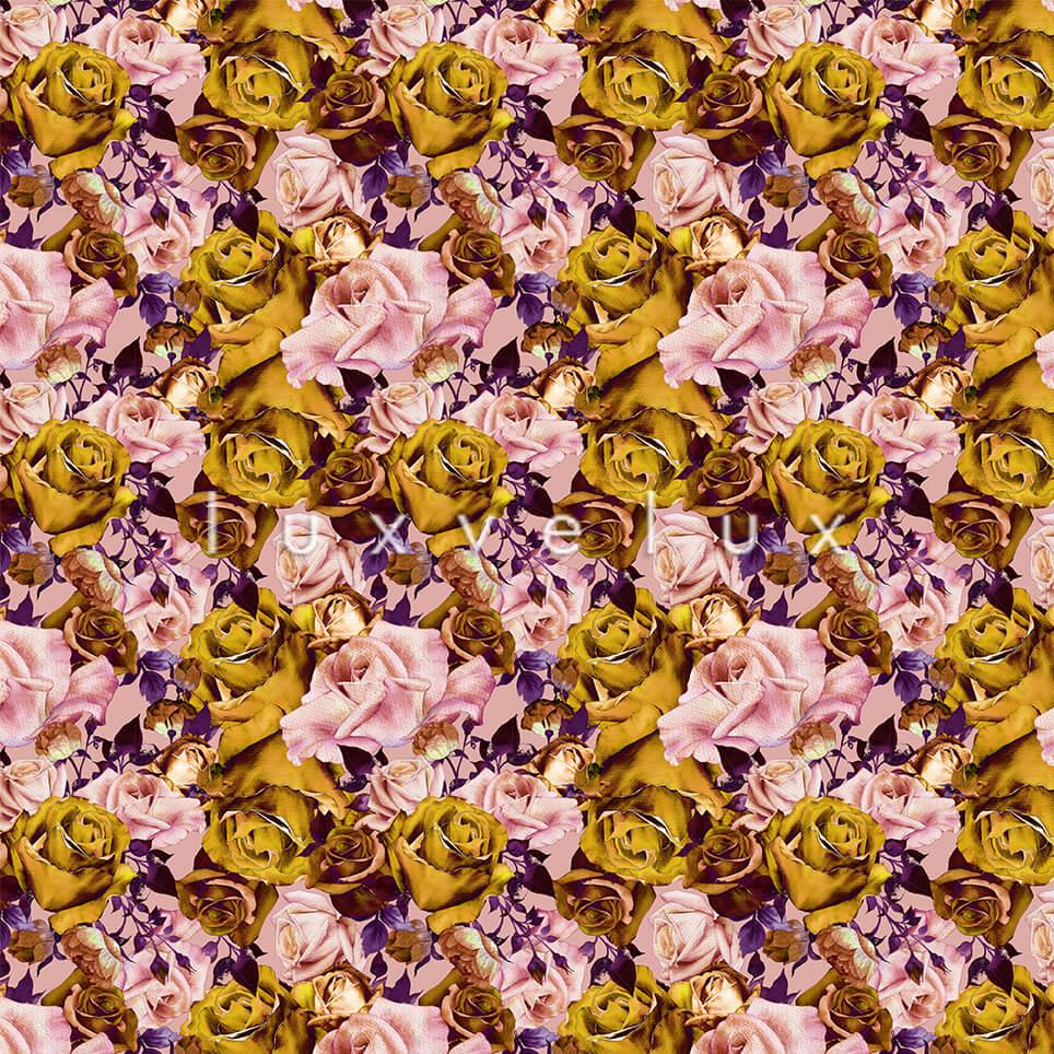 Rose Garden Roses Yellow Pink Kitty