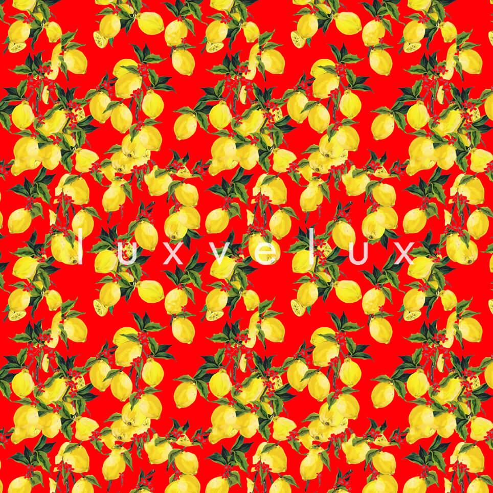 Leafy Lemon Tree Yellow Red Jenny