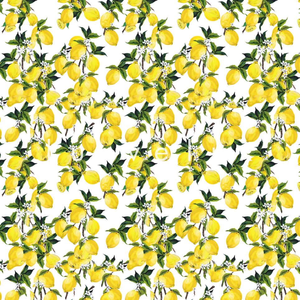 Leafy Lemon Tree Yellow White Jenny